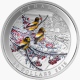 2015 Winter Freeze $20 999 Fine Silver Proof Colour Coin
