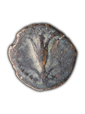 Ancient Bronze Jewish Coin - Lily Of Jerusalem