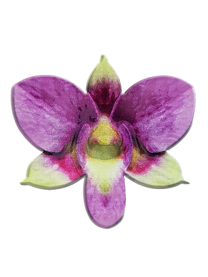 The Singapore Mint 50th Anniversary Orchid-Shape Medallion