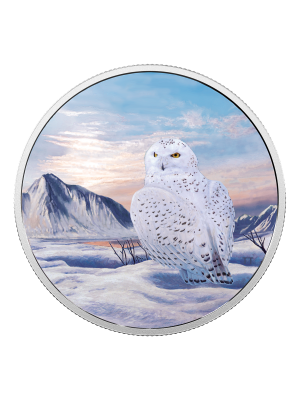 2018 Arctic Animals & Northern Lights Snowy Owl 999 Fine Silver Coin